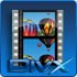 Video to DivX Converter